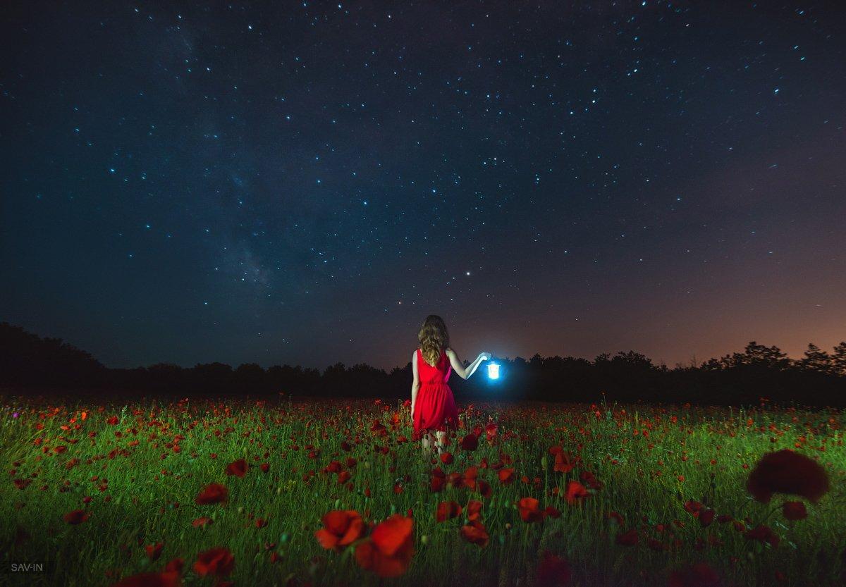 маки, звёзды, ночь, Крым, пейзаж, романтика, Савин Станислав