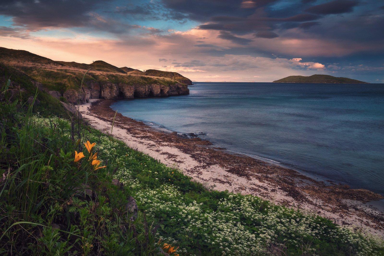Вечер, Море, Пляж, Скалы, Цветы, Андрей Кровлин