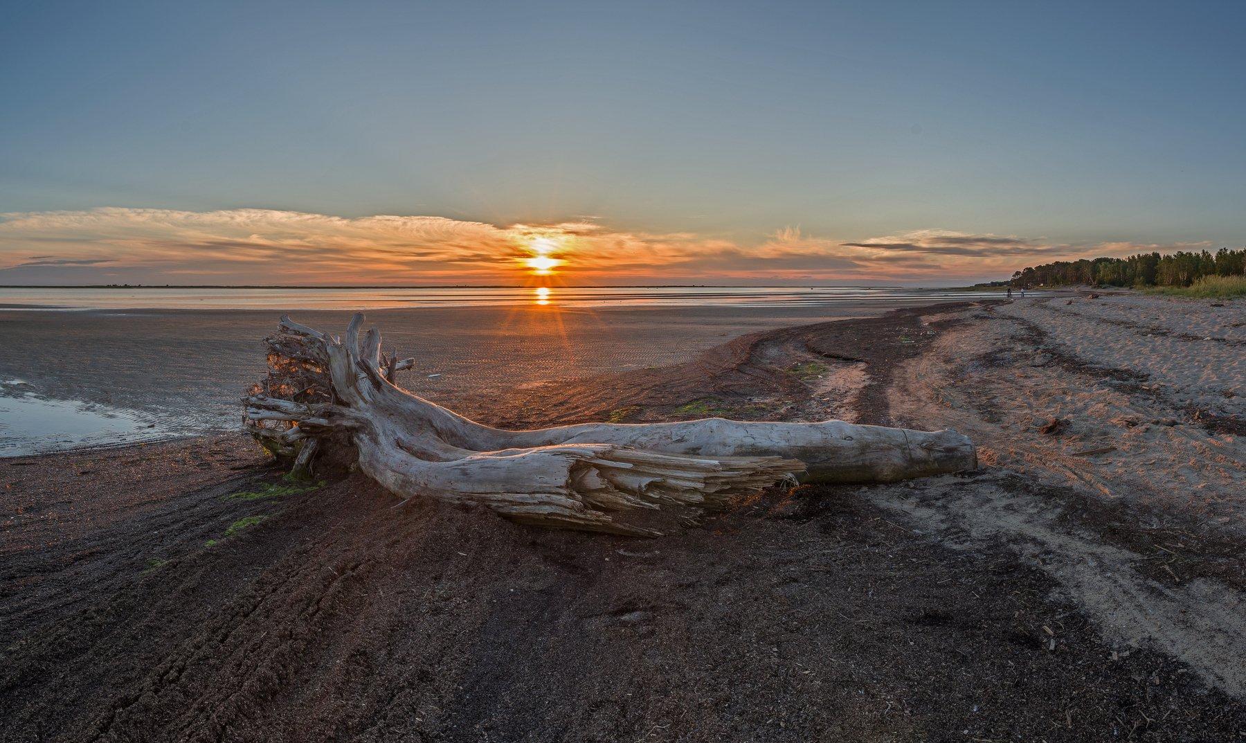 белое море, берег, закат, ягры, Олег Авдеев