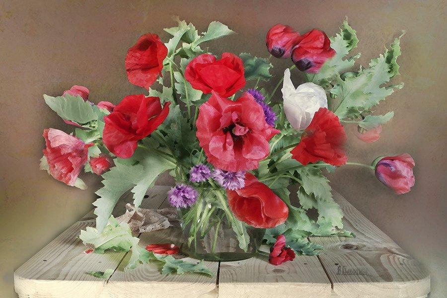 Маков цвет Вера Павлухина