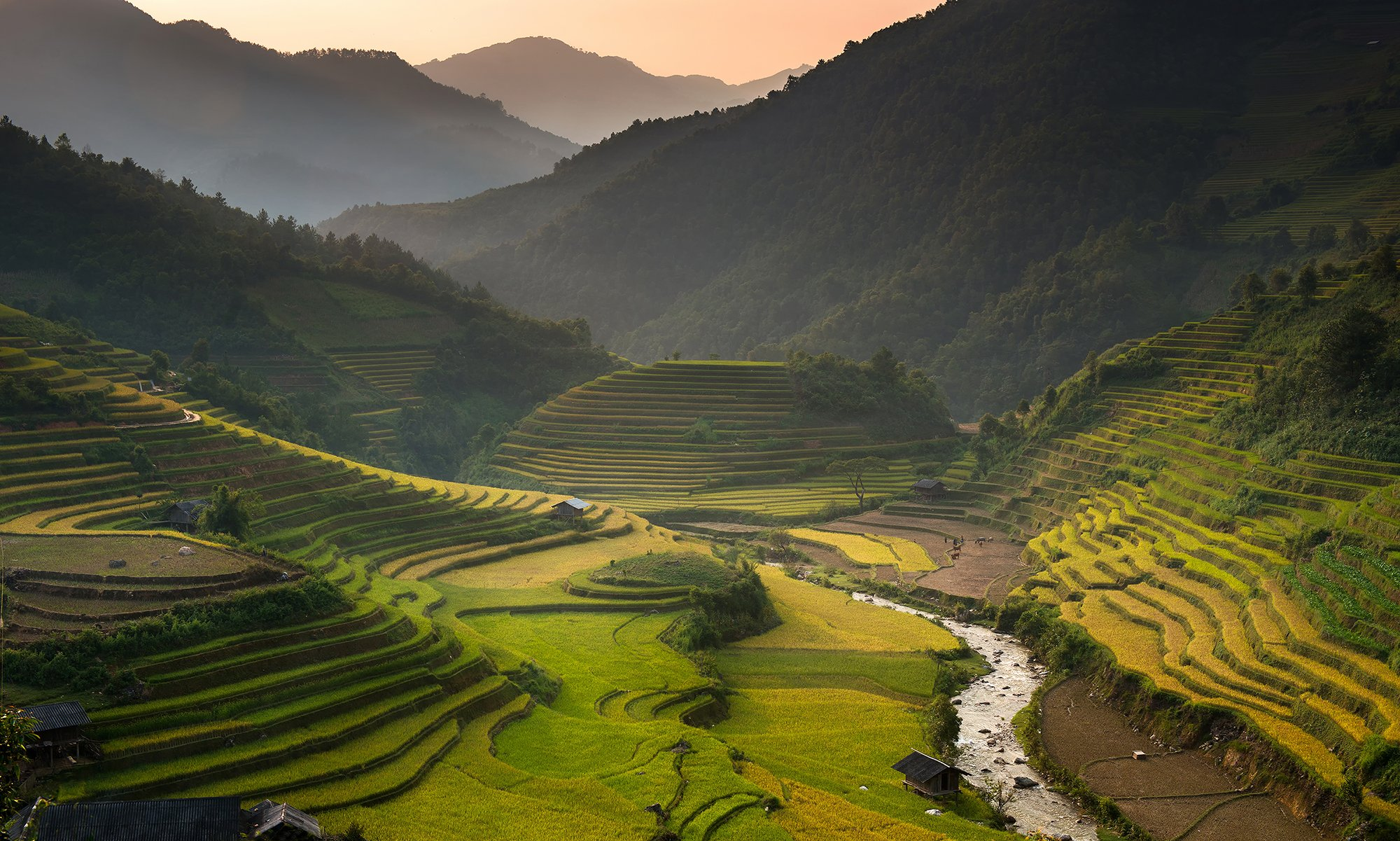 Color Image, Grass, Horizontal, Landscape, Mountain Range, North Vietnam, Outdoors, Photography, Rice - Food Staple, Rice Paddy, Terraced Field, Tranquil Scene, Vietnam, sarawut intarob