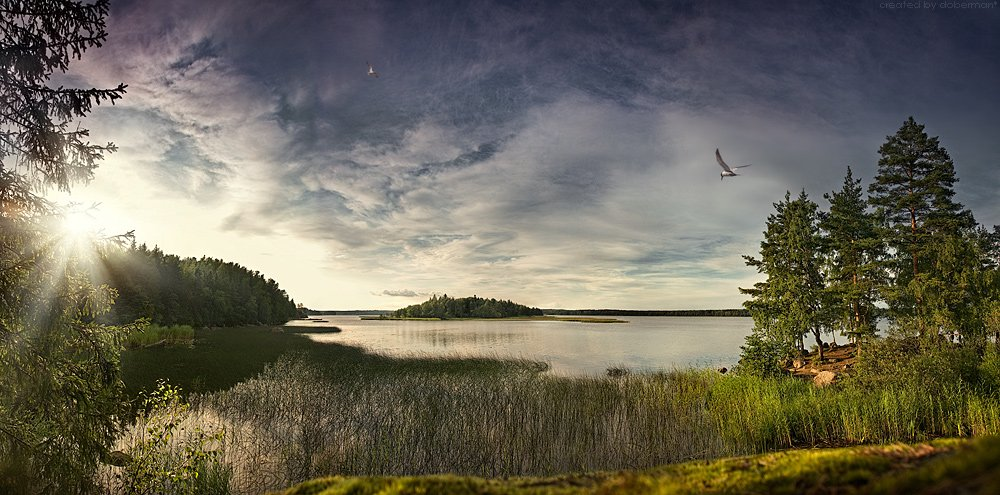 выборг, монрепо, закат, вода, камни, чайка, гранит, финский залив, doberman, doberman