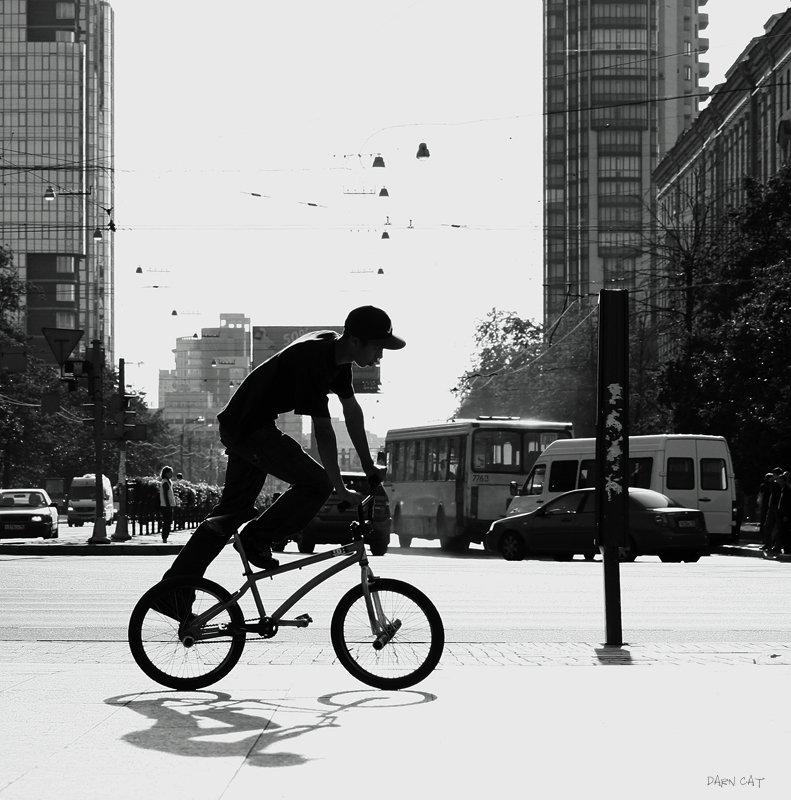 life, on, manhattan, жизнь, на, манхеттане, велосипед, прогулка, город, парень, тень, Darn Cat