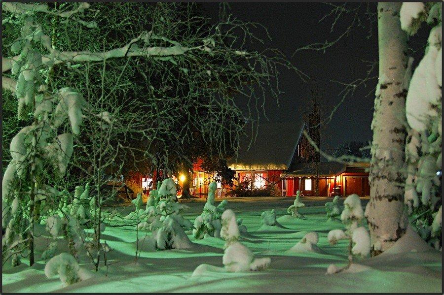 зима, , , снег, , , лапландия, , , швеция, , , сказка, , , иней, Елена