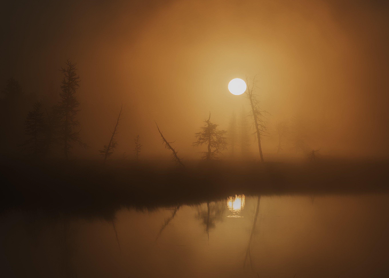 рассвет, утро, ямал, янао, уренгой, новыйуренгой, туман, отражение, Камиль Нуреев