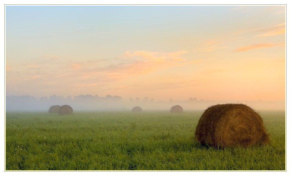 поле, стога, утро, туман, роса, Евгений Гаганов