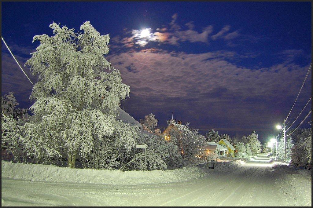 швеция,скандинавия,лапландия,зима,снег,пейзаж, Елена