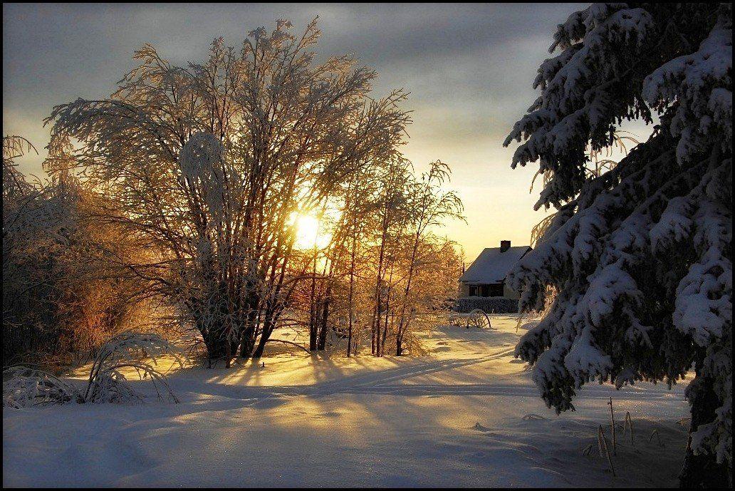 швеция,скандинавия,заполярье,зима,природа,пейзаж, Елена