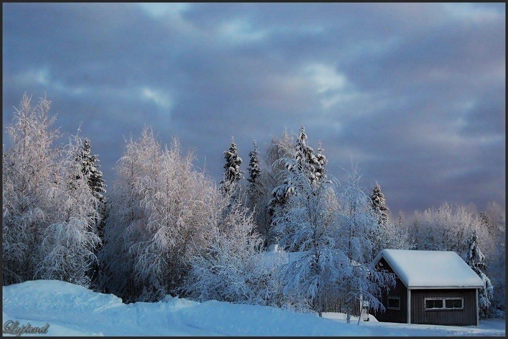 швеция,зима,скандинавия,заполярье,лапландия,природа,пейзаж, Елена
