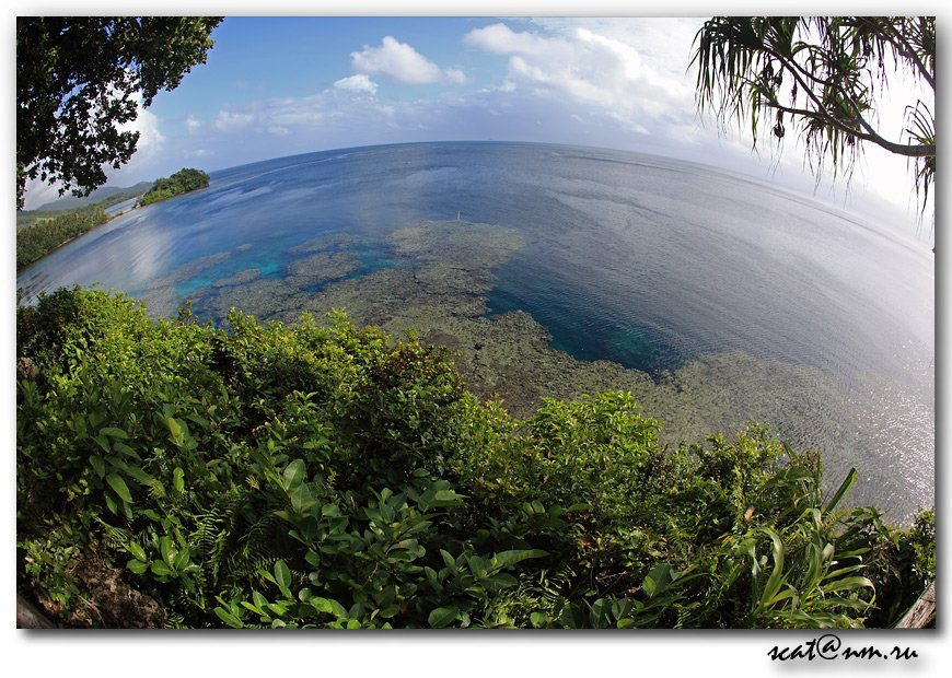 papua new guinea, round world, ocean, рифы, reef, папуа, Андрей (SCAT)