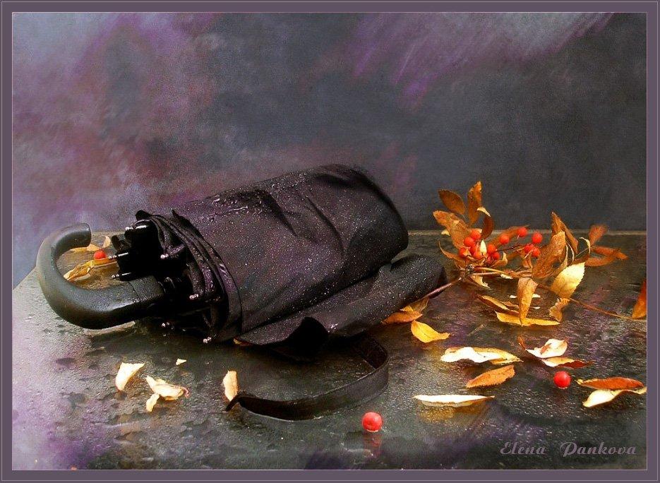 осень, дождь, зонт, листья, Elena Pankova