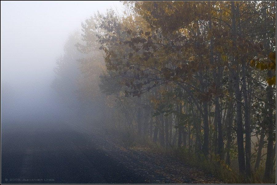 утро,осень,дорога,туман,камчатка, Александр Лицис