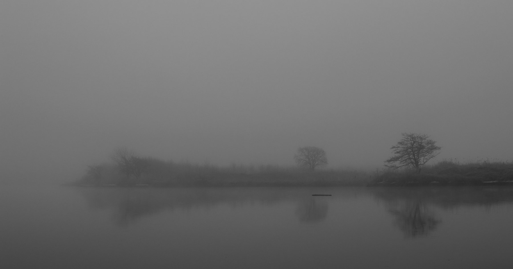 туман, Виталий Курин