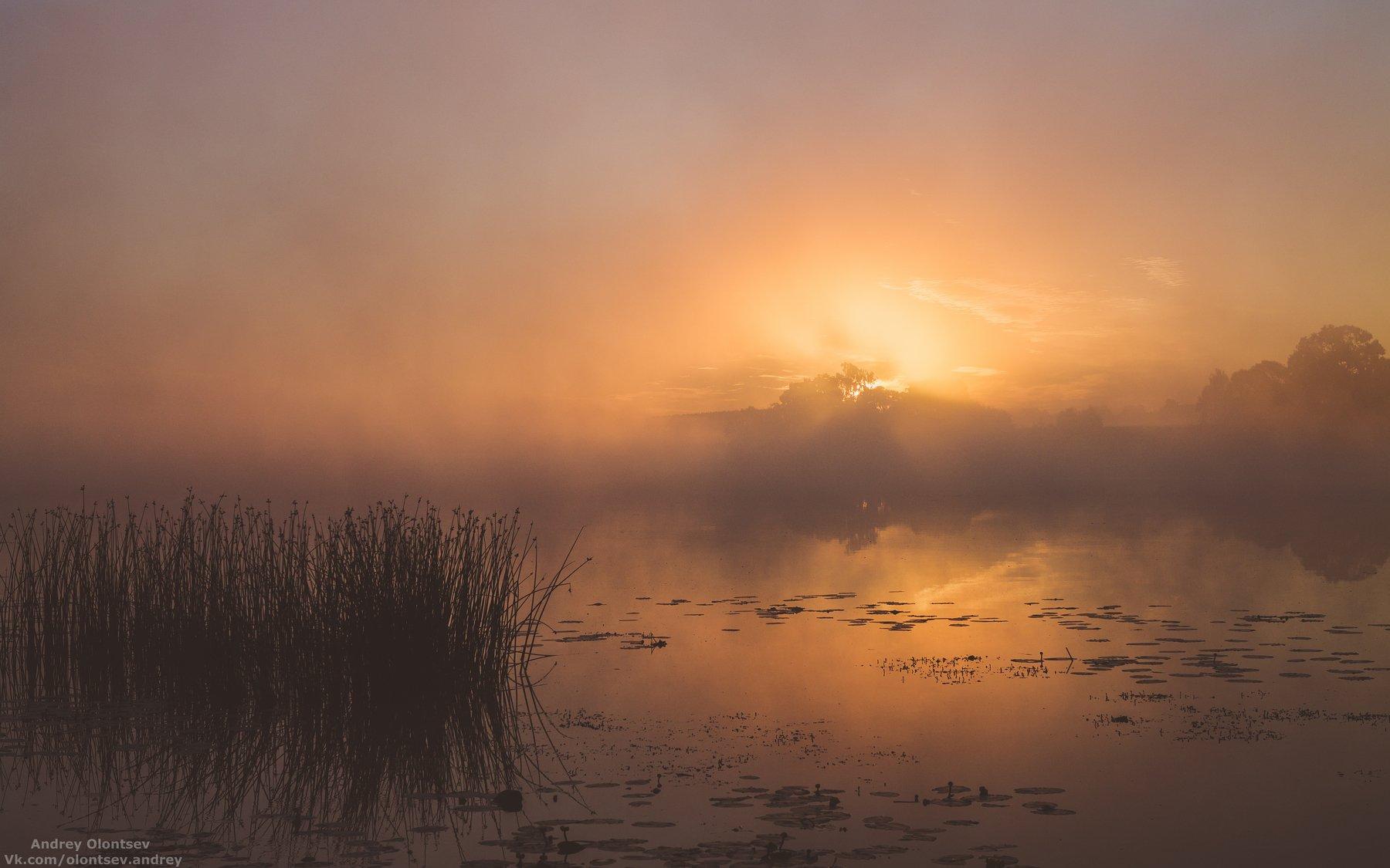 Дубна, Пейзажи, Рассвет, Ратмино, Туман, Андрей Олонцев