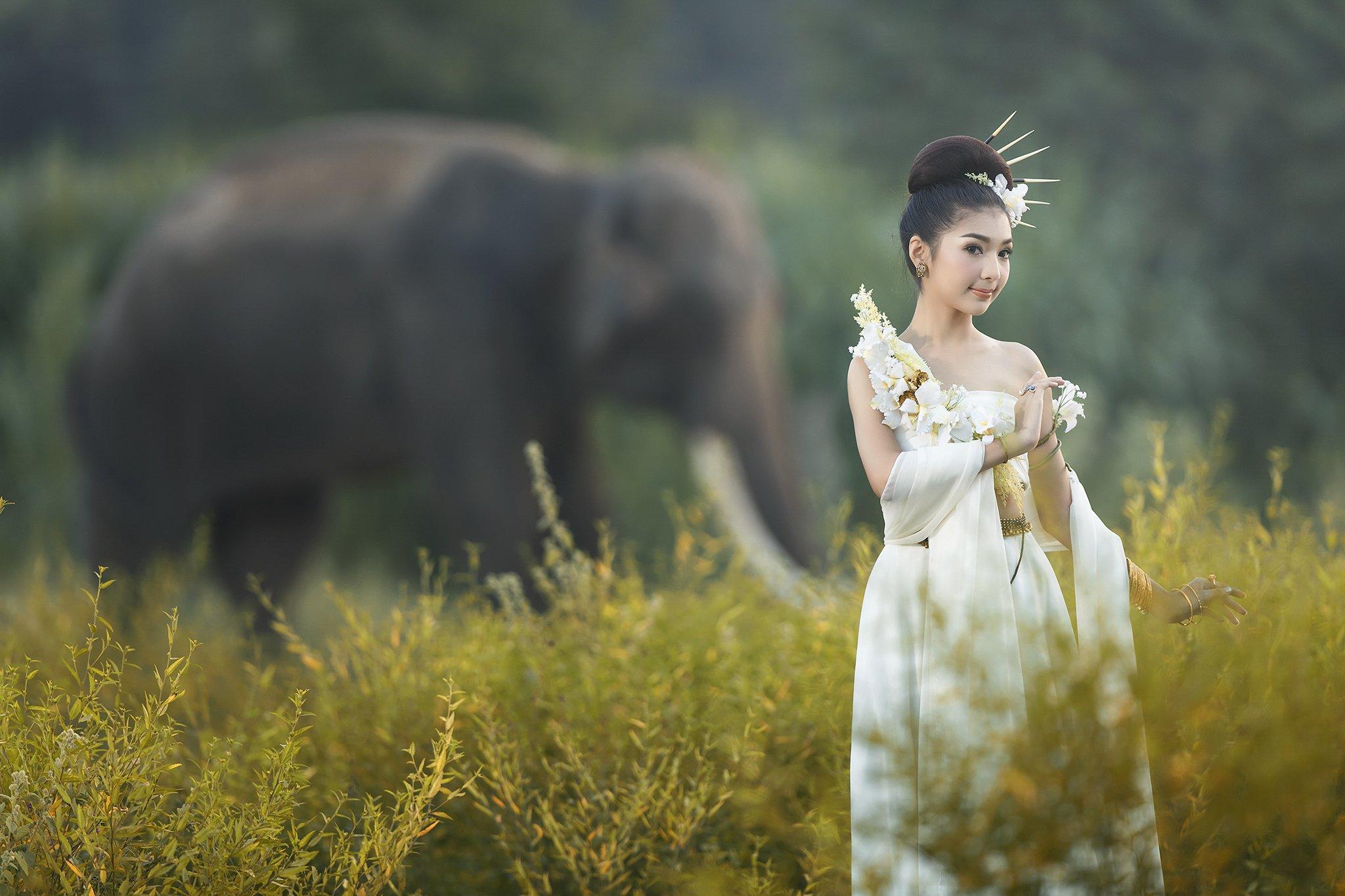 Animals, Asia, Asian, Beautiful, Cute, Elephant, Girl, Thai, Thailand, Woman, Saravut Whanset