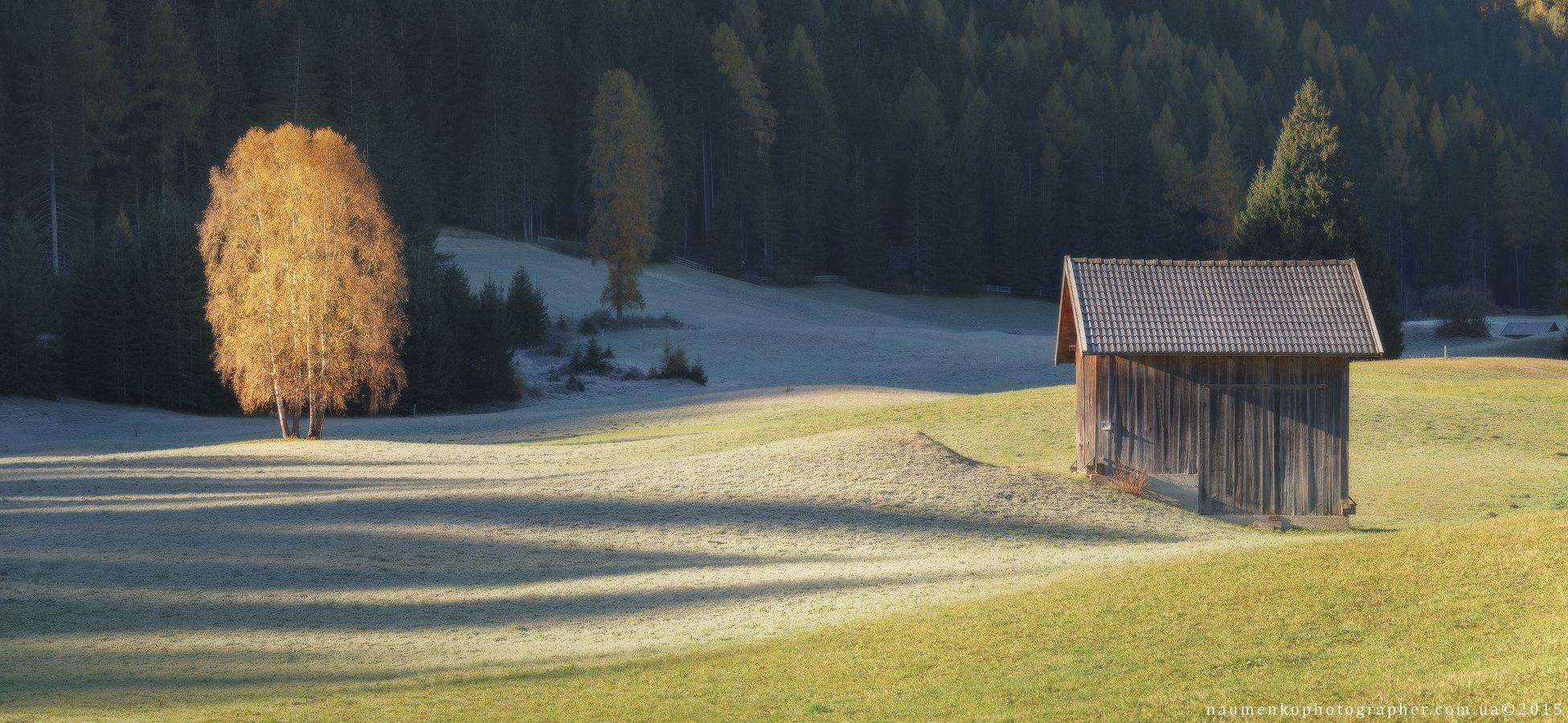 braies, sony, панорама, осень,утро, дерево,свет,пейзаж, тени, Александр Науменко