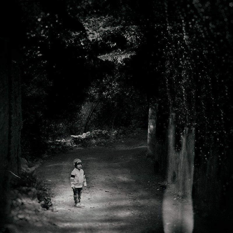 fineart, creative, concept, tree, conceptual, boy, wood, ghost,, milad safabakhsh