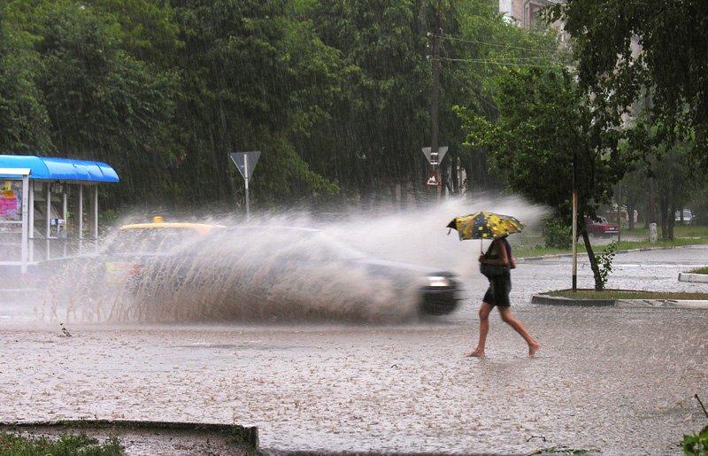 лето, дождь, Виталий Кожевников