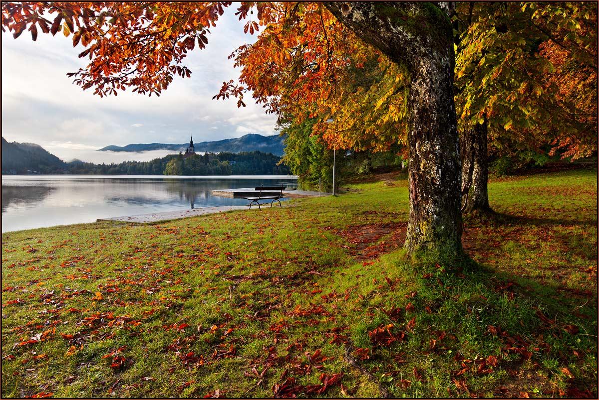 озеро, блед., словения., izh Diletant (Валерий Щербина)