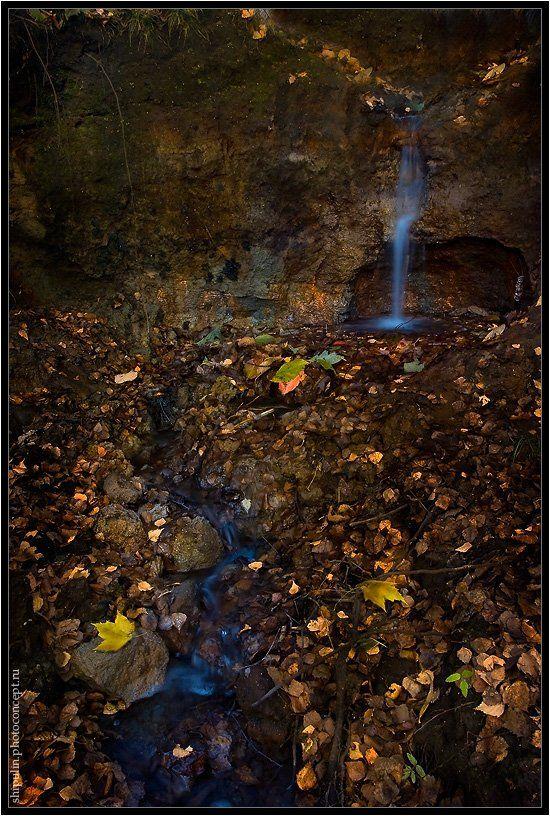 осень,ручей,ручеёк,ручьи,томск,владимир,шипулин,фотограф, Vladim_Shipulin