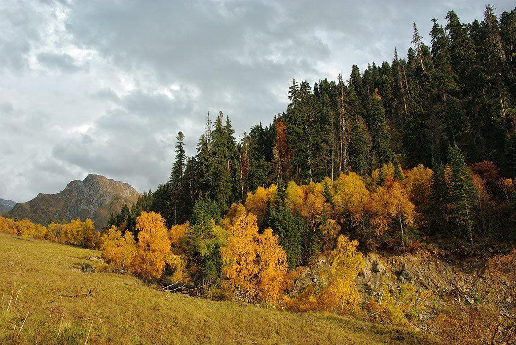 осень,горы, Grey