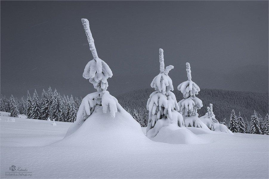 горы, карпаты, пейзаж, зима, Котенко Александр