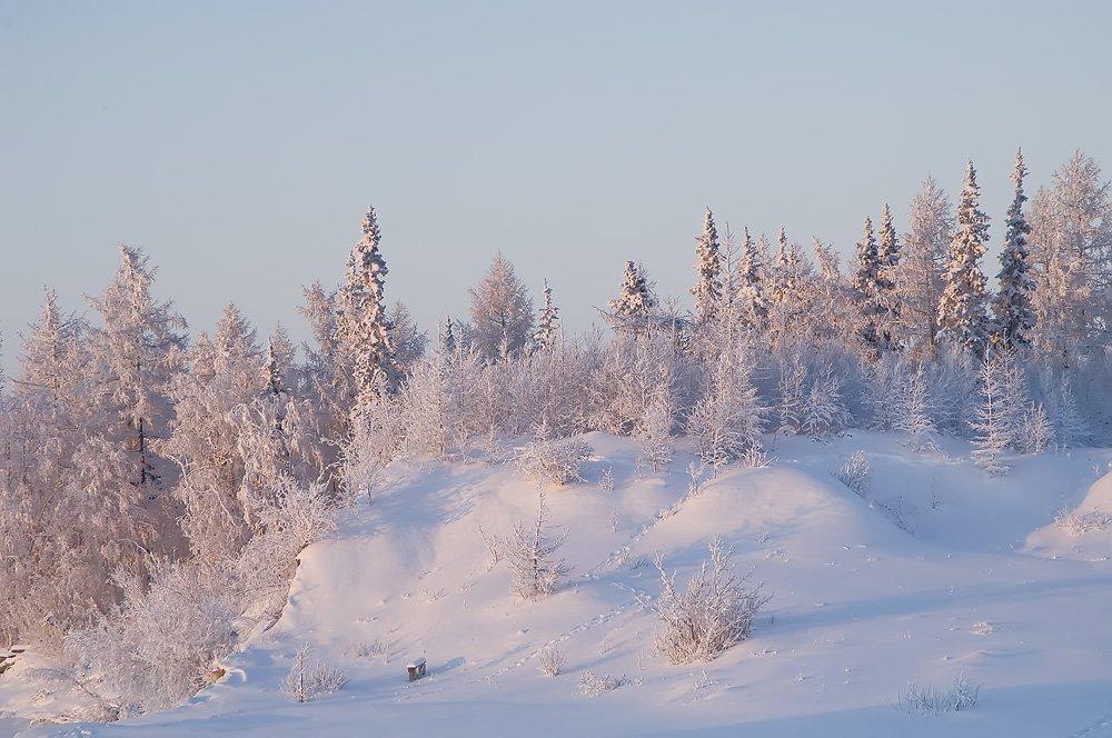 зимы прекрасные узоры, север, природа, пейзаж, den-sau-pin