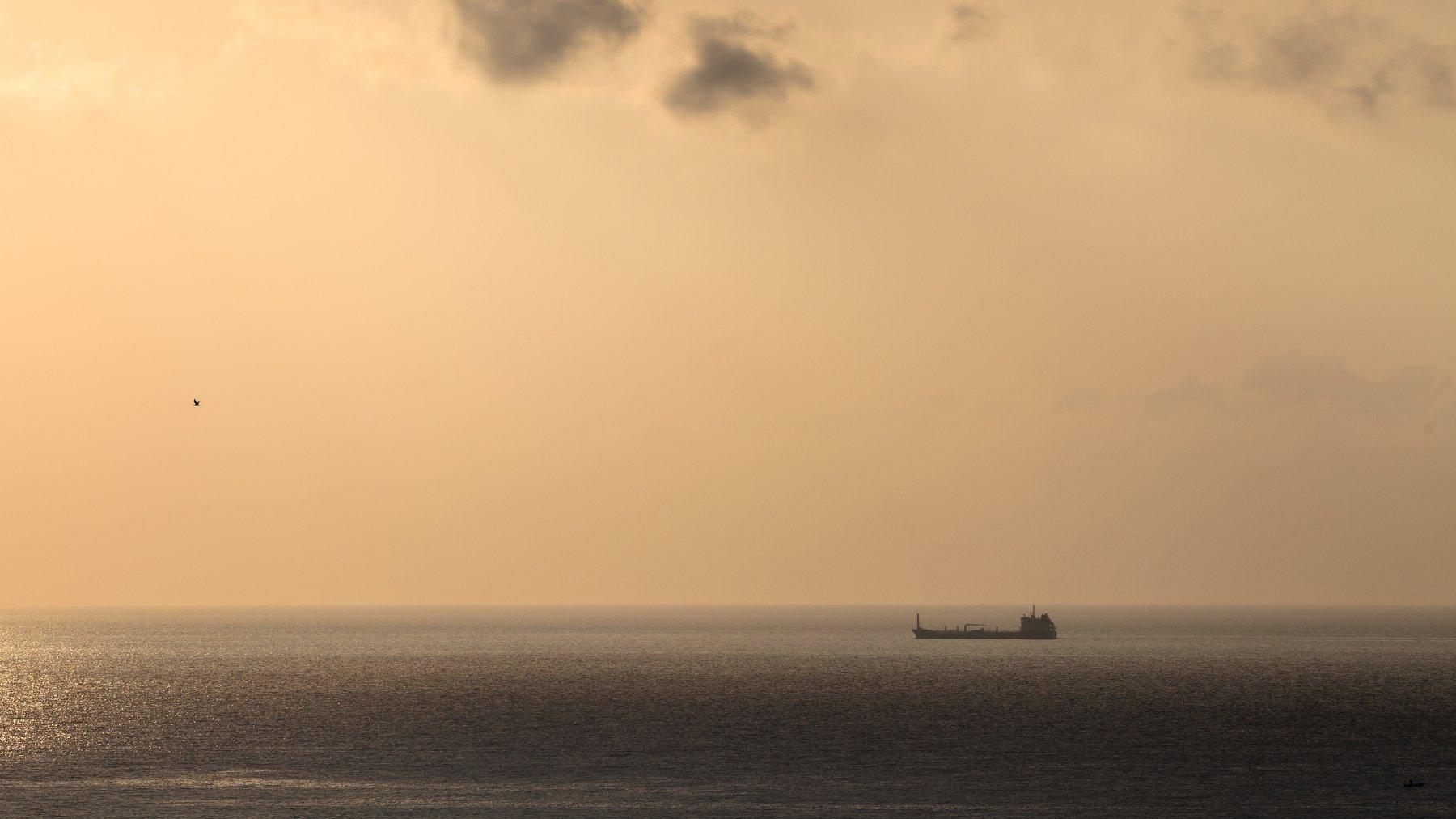 Море, корабль, рассвет, оранжевый, чайка, сухогруз, танкер, горизонт, минимализм, Иван Губанов