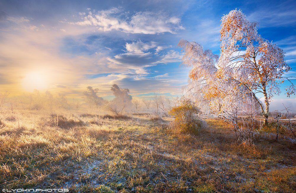Азербайджан, Заповедник, Мороз, Осень, Рассвет, Утро, Lyokin
