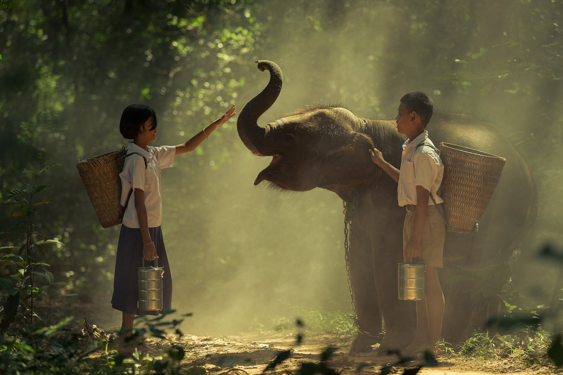 children,elephant,thai,student,boy,girl,friendship,life,animal,wildlife,asia,love,, SUTIPORN SOMNAM