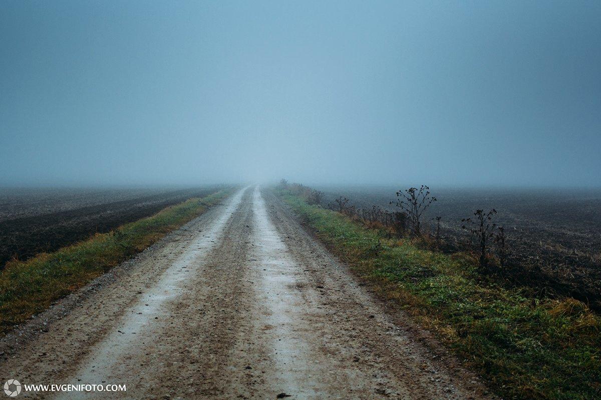 пейзаж,туман,дорога,поле,природа,осень, Евгений