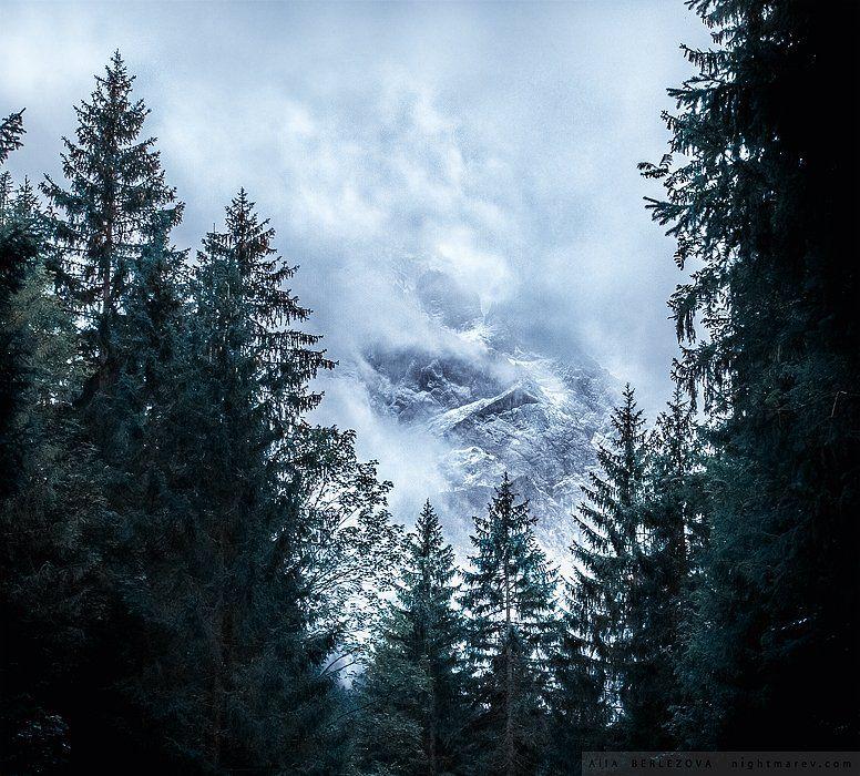 bavaria, clouds, fog, forest, germany, mist, mountains, snow, vertex, zugspitze, бавария, вершина, германия, горы, лес, облака, снег, туман, цугшпитце, Alla