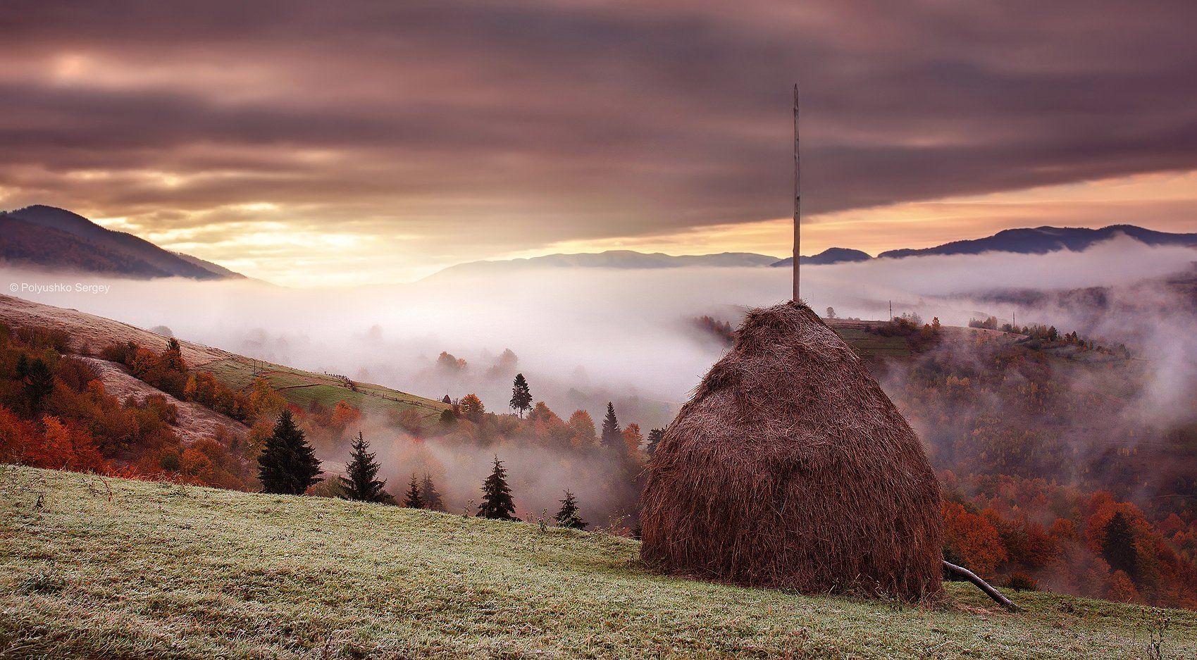 Карпаты, Рассвет, Стог, Туман, Украина, Полюшко Сергей