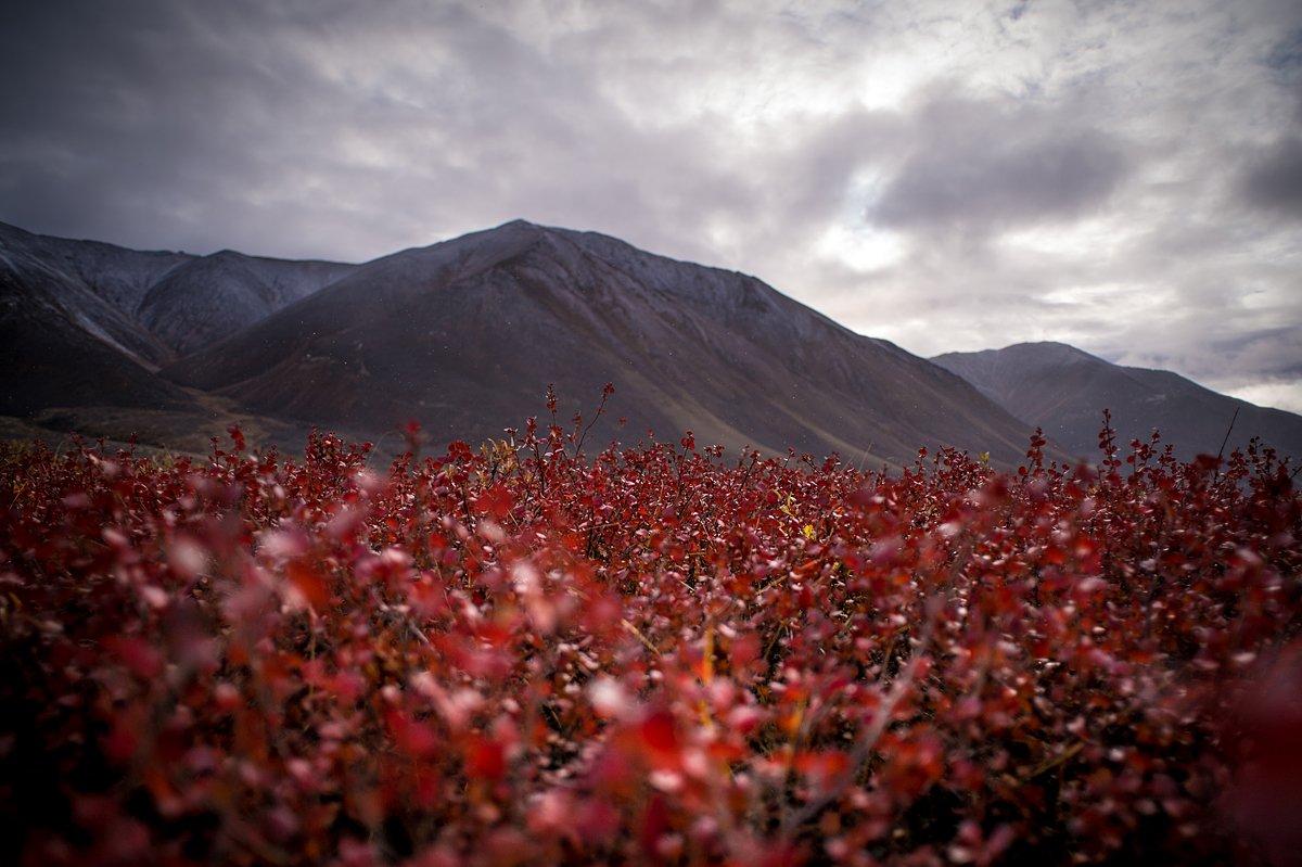осень, горы, облака, Чукотка, Труфанов Евгений