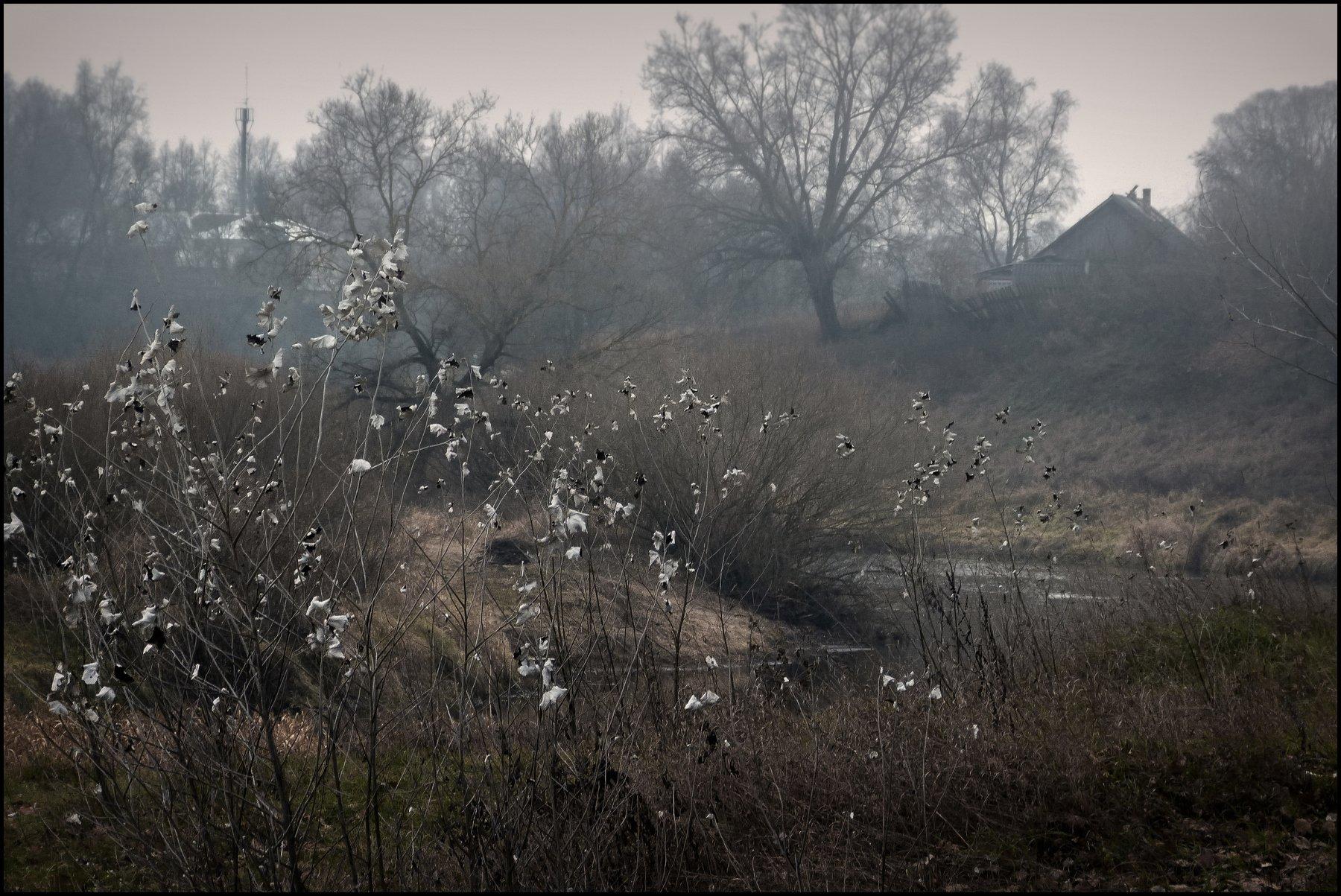 настроение, пейзаж, поздняя осень, россия, сумерки, времена года, короткий день, пасмурно,, Лидия