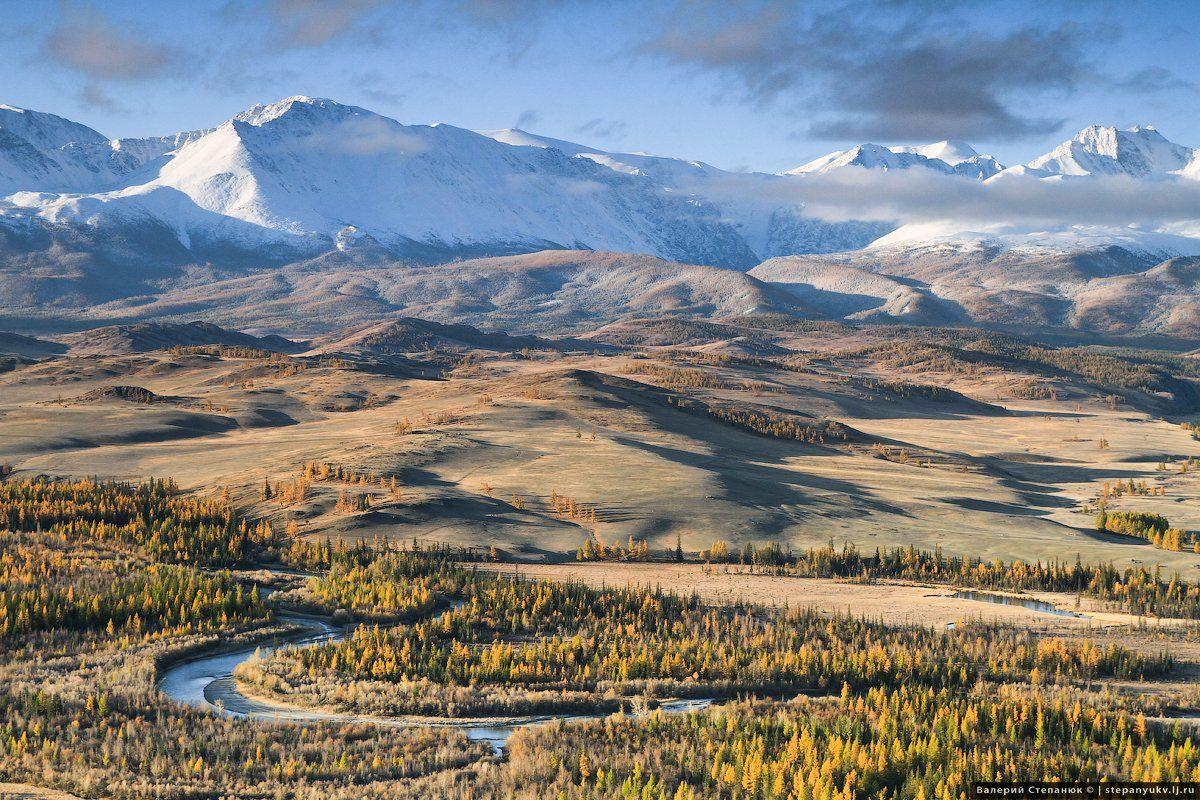 Алтай. горы, природа, Курай, Степанюк Валера