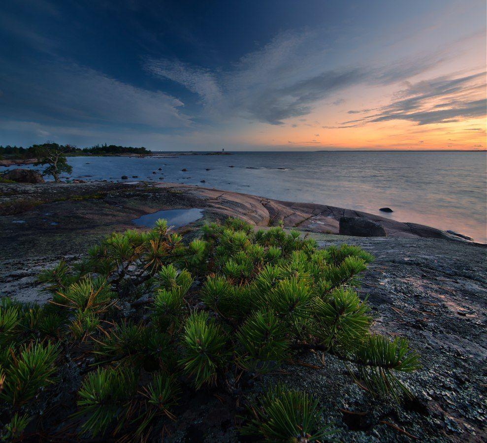 закат, море, природа, Дмитрий Воронцов