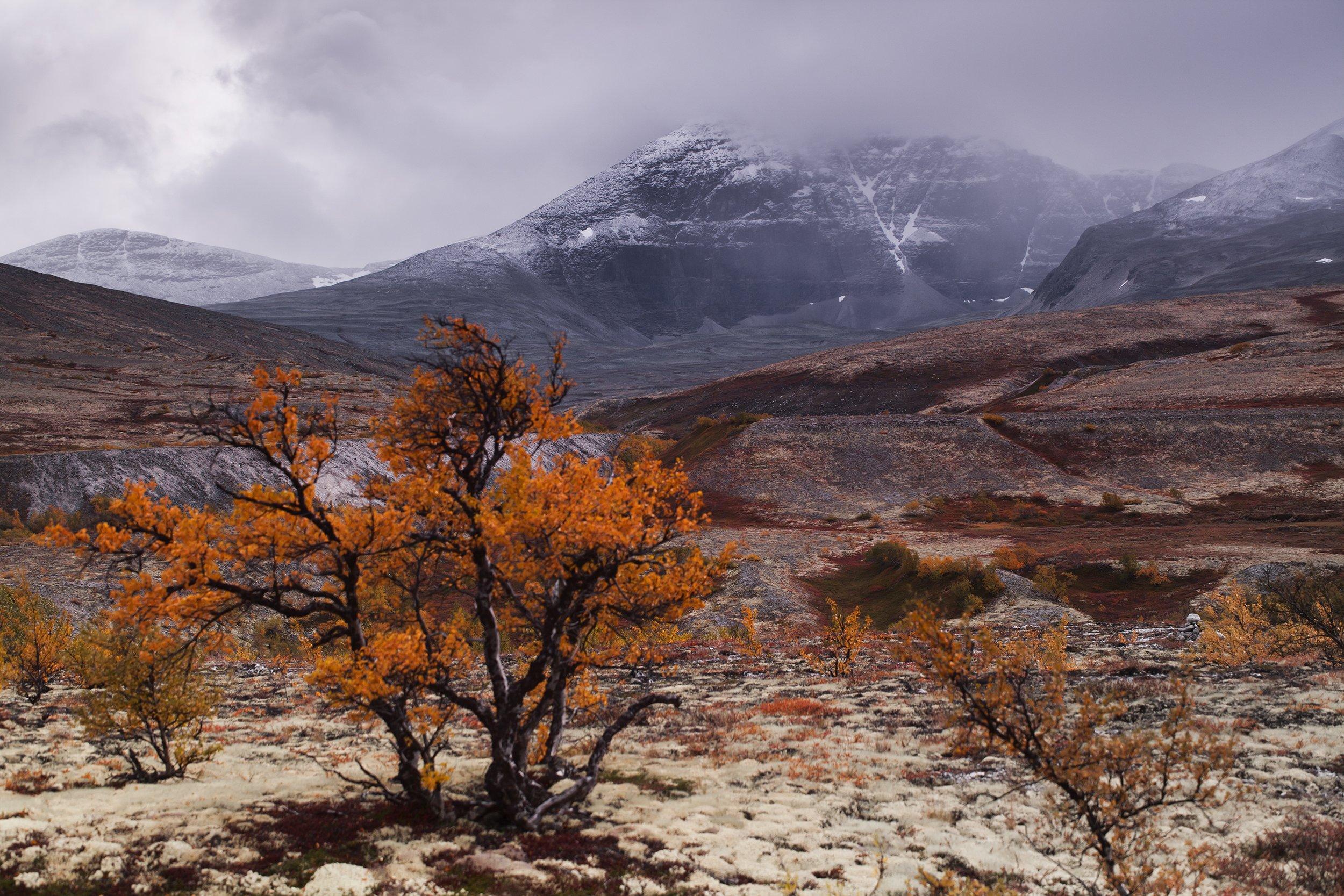 природа, Норвегия,осень, горы, Олег Жуков