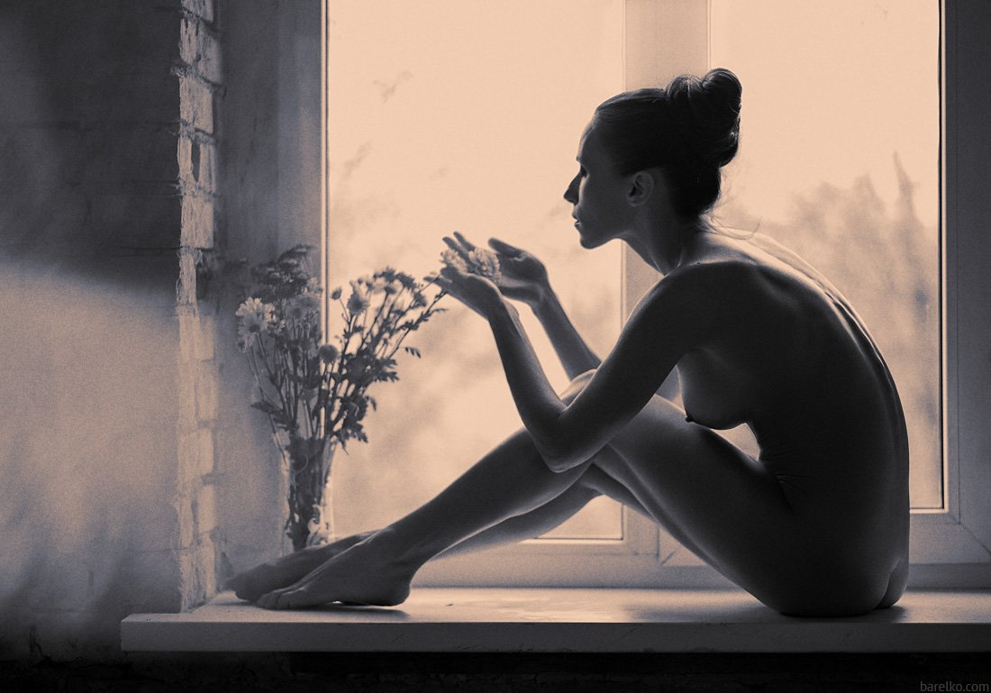 nude, art, nu, erotica, window, flowers, Roman Barelko