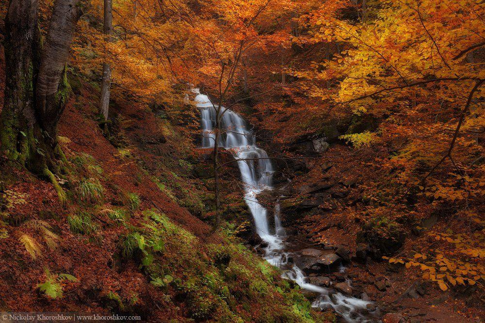 Водопад, Карпаты, Лес, Осень, Пейзаж, Украина, Николай Хорошков
