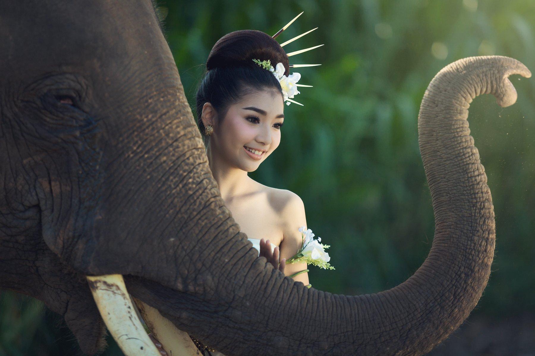 portrait,women,elephant,ivory,thailand,beautiful,, SUTIPORN SOMNAM