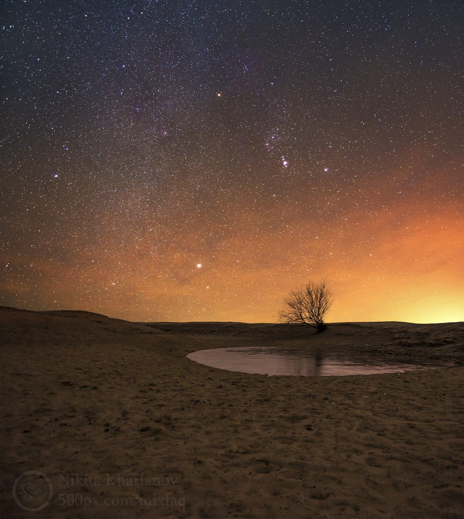 астрофото, астрономия, астрофотография, ночной пейзаж, Млечный путь, звездный путь, звезды, звездная ночь, звезда, созвездие, созвездие Ориона, Ригель, Сириус, облака, туманное небо, сияние атмосферы, ночной пейзаж, астропейзаж, одинокое дерево, дерево, к, Харланов Никита