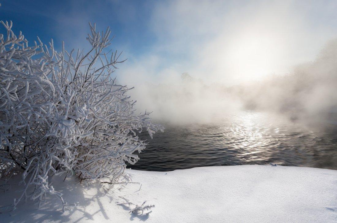 Речка вода снег кусты лес туман сугробы солнце зима мороз, Георгий Машковцев