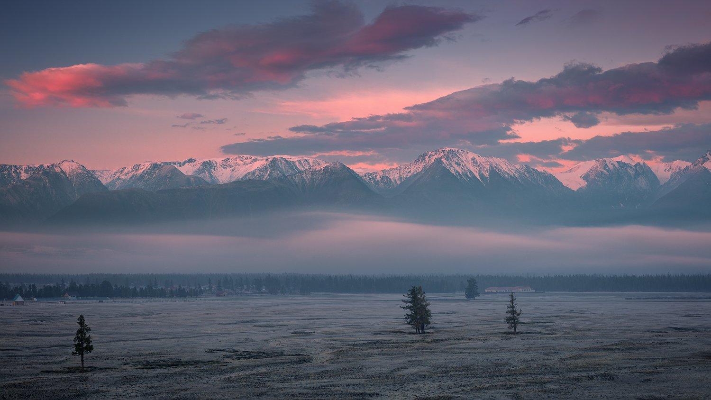 алтай, большой, восход, высокий, горы, иней, красивый, красный, пейзаж, природа, раннее, рассвет, заря, розовый, синий, снег, степь, утро, холодный, хребет, туман, панорама, путешествия, туризм, сибирь, altai, big, sunrise, high, mountains, frost, beautif, Дмитрий Антипов