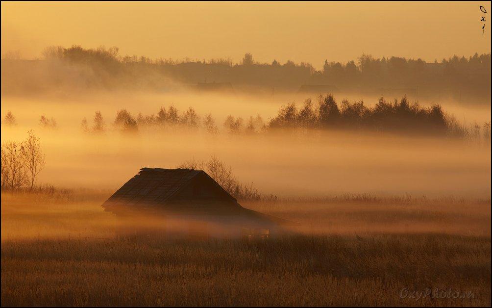 дом, рассвет, туман, утро,, Оксана Борц