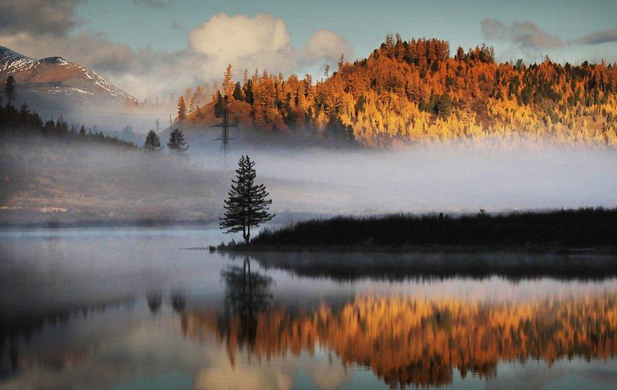 Горный алтай, Золотая осень, Озеро, Осень, Отражение, Алексей Бушов