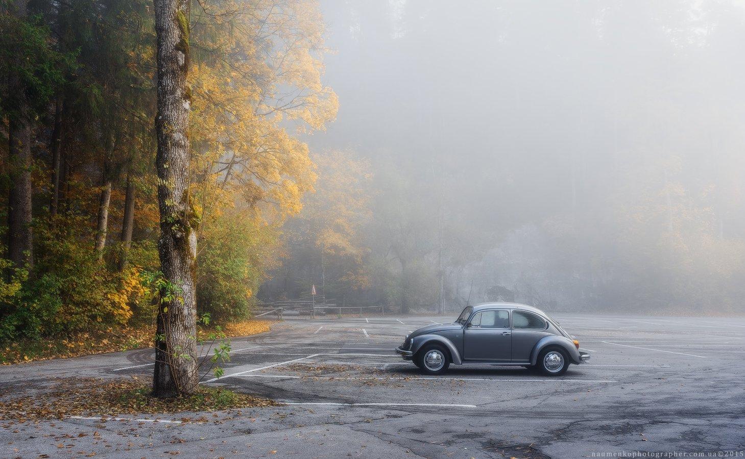 fussen,bavaria,германия,утро,парк,осень,sony,a7r, Александр Науменко