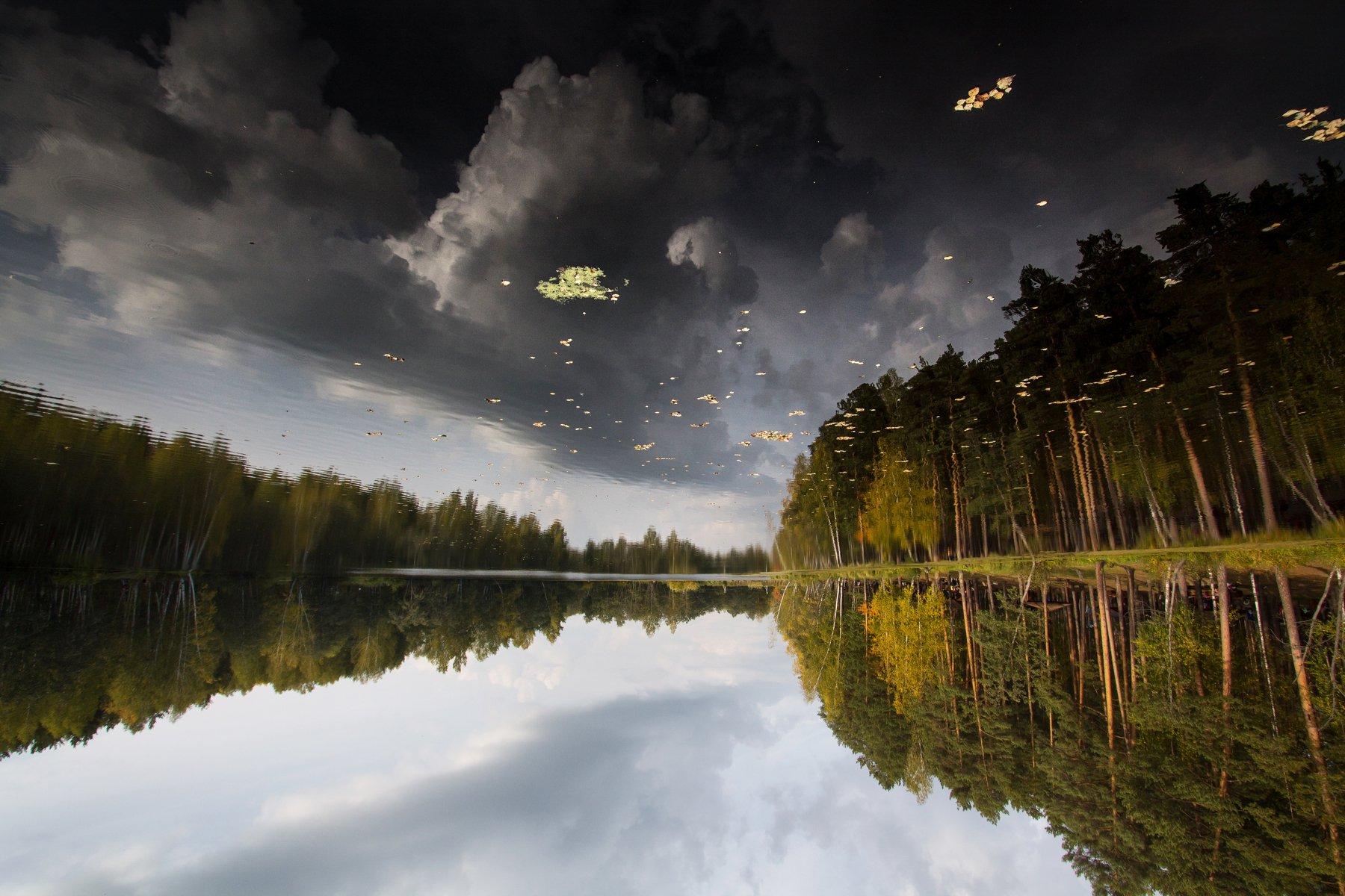 озеро, отражение, вода, лес, деревья, осень, небо, облака, Sergey Garifullin