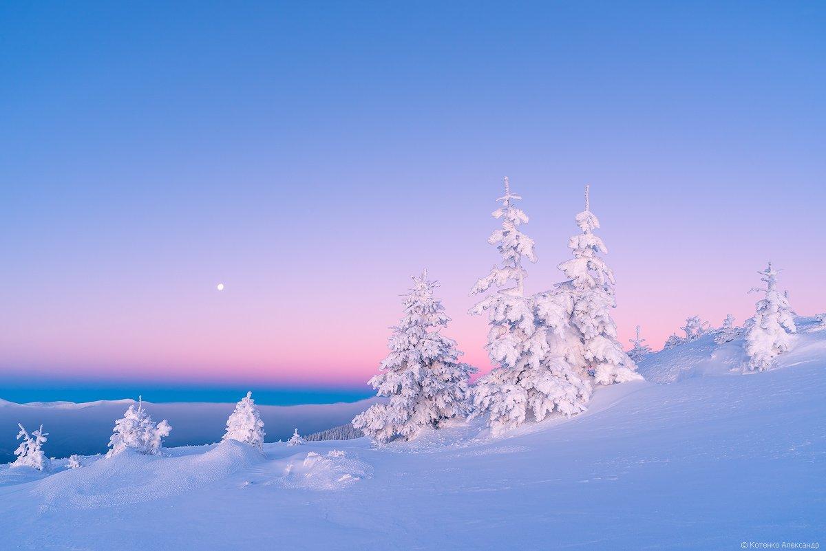 Горы, Зима, Карпаты, Александр Котенко