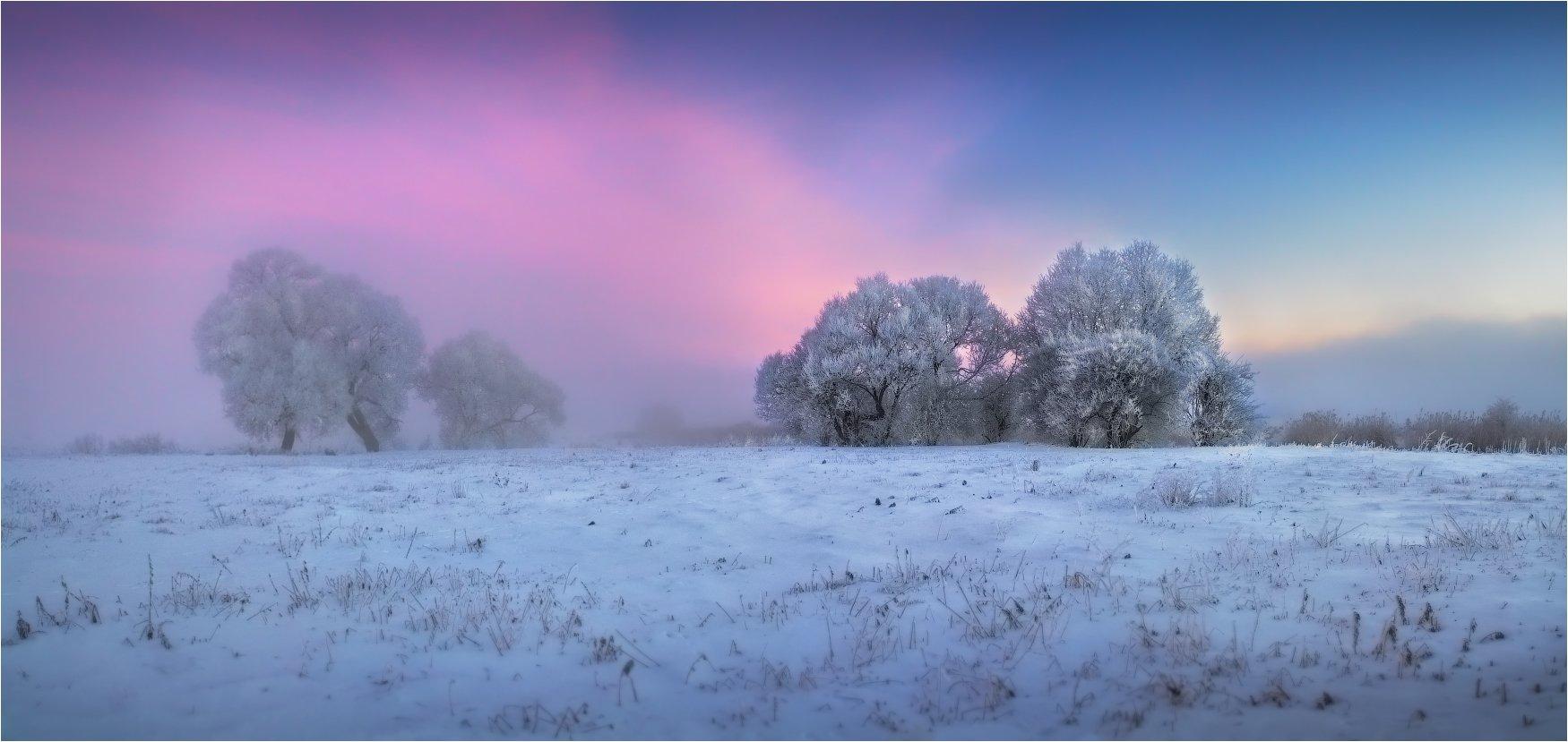 дымка, зима, мороз, рассвет, Сергей Шабуневич